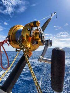 Pêche en traîne légère dans le parc naturel marin du Golfe du Lion avec Catalunya Pro Fishing. Découverte des différentes techniques de prospection.