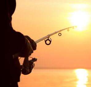 decouverte et initiation à la pêche côtière
