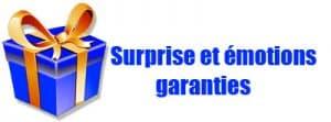 Idée cadeau - Surprise et émotions garanties
